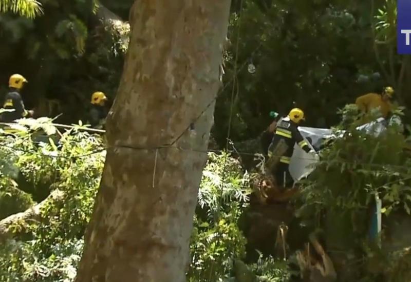 """Огромное 200-летнее дерево рухнуло на толпу людей в Португалии <span class=""""color_red"""">- ВИДЕО</span>"""