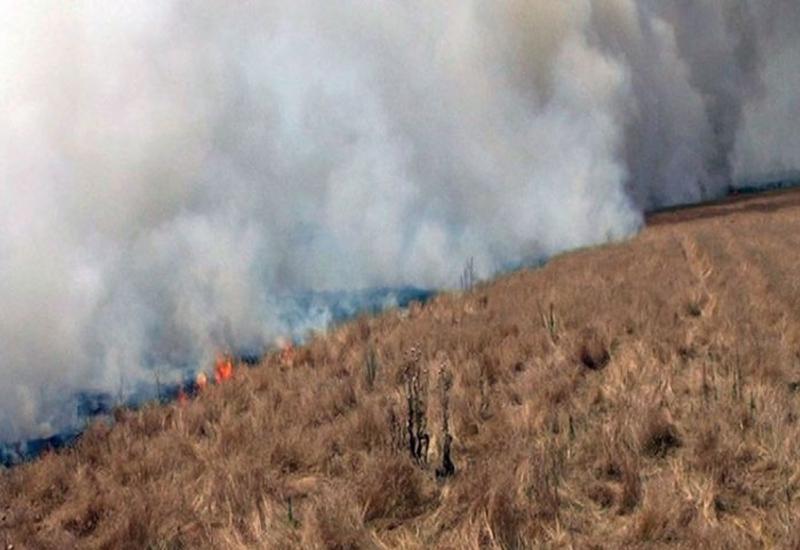 В Агсу в горной местности начался пожар