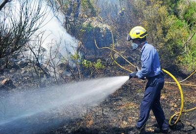 Пожар в Боржомском ущелье ликвидирован