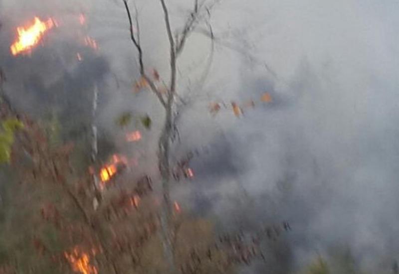 МЭПР: Пожар в Габале взят под контроль