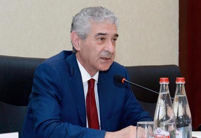 Али Ахмедов: В Азербайджане ежегодно должны открываться 100 тыс. рабочих мест