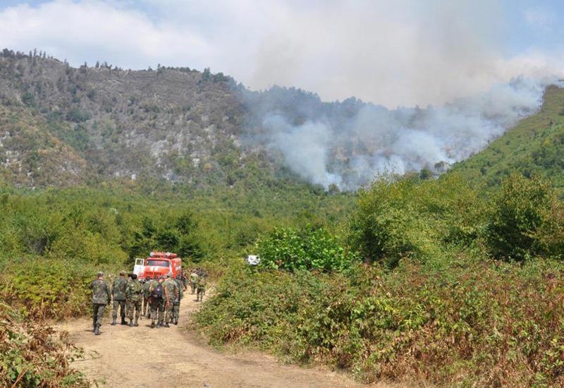 Сотни сотрудников МЧС и Минэкологии тушат лесные пожары в Габале