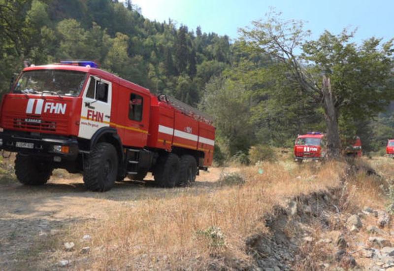 Лесные пожары в Габале полностью потушены