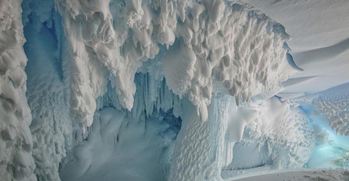 Втёплых пещерах под ледниками Антарктиды процветает жизнь