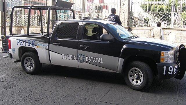 ВМексике найден труп 37-летнего ассистента продюсера сериала «Нарко»