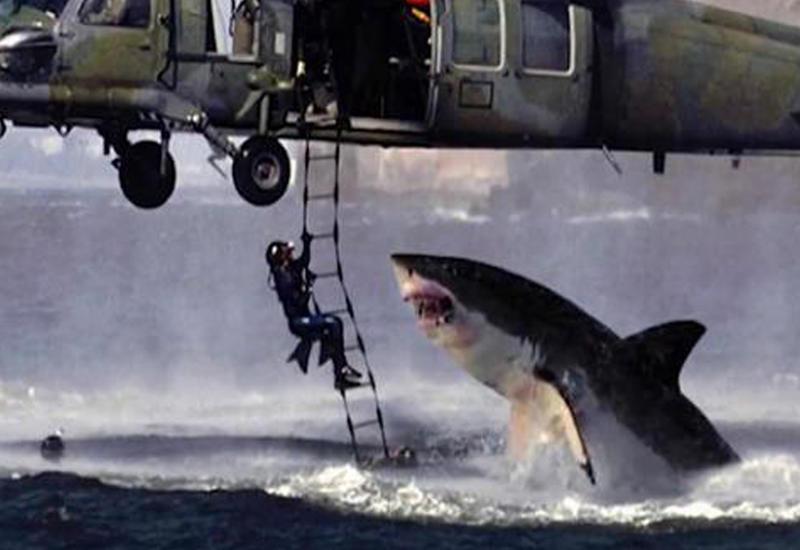 10 фотографий, которые обманули весь мир