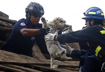 """11+ трогательных фотографий спасения животных, которые попали в беду <span class=""""color_red"""">- ФОТО</span>"""