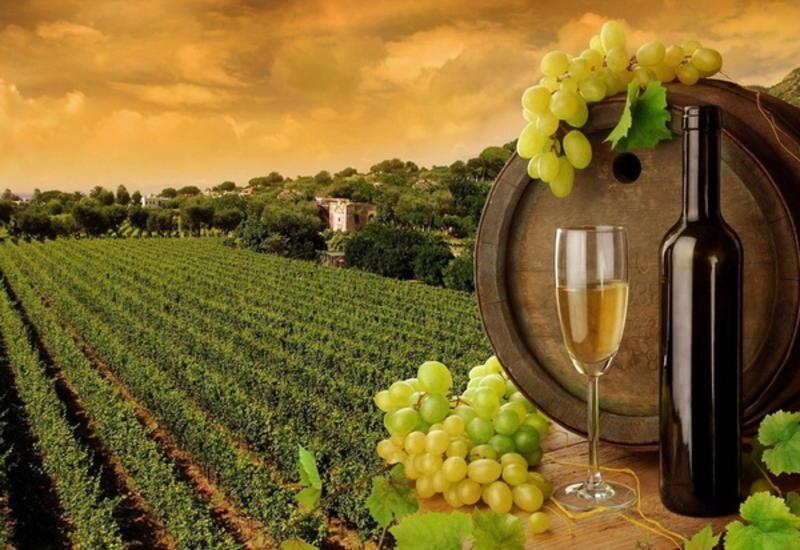 Китайцы оценили вкус азербайджанских вин