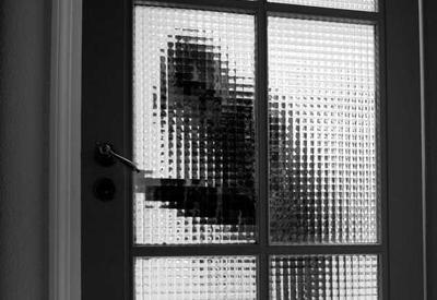 В Баку арестована банда, ограбившая дом известного врача