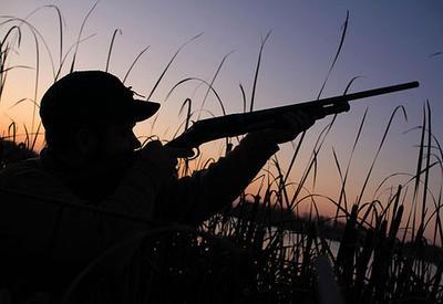 В Азербайджане браконьеров оштрафовали на крупную сумму