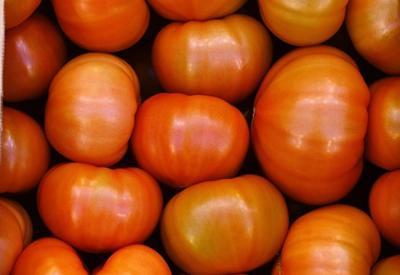 Москва открыла путь 50 тысячам тонн турецких помидоров