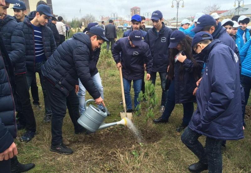 В ходе прошедшей по инициативе Общественного объединения IDEA акции по озеленению школьники посадили более 400 деревьев
