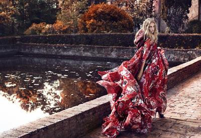 """Год Собаки 2018 - Гороскоп по годам рождения <span class=""""color_red"""">- ФОТО</span>"""