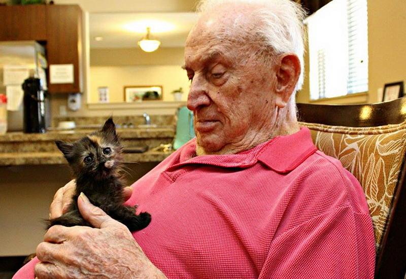 """Дом престарелых, где заботятся и о пожилых людях, и о брошенных животных <span class=""""color_red"""">- ФОТО</span>"""