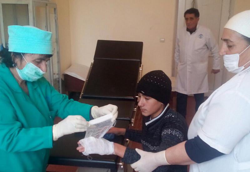 В Гобустане на подростка напали шакалы