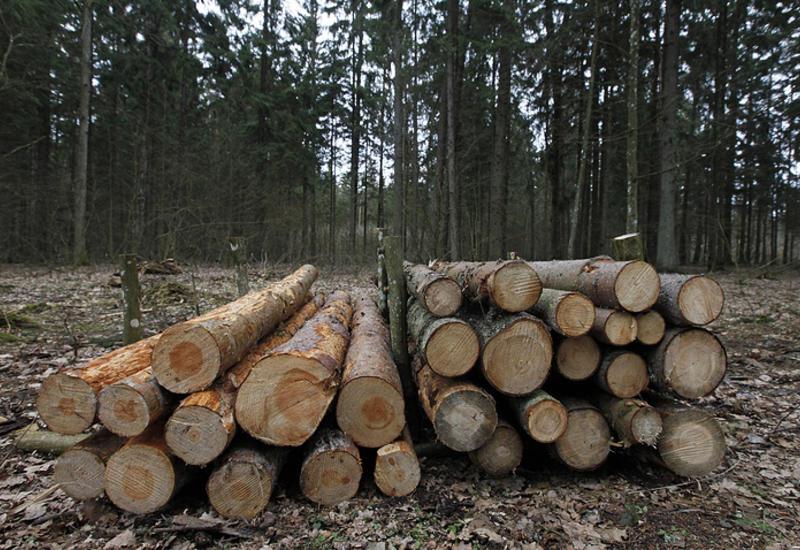 Суд ЕС обязал Польшу платить €100 тыс. штрафа в день