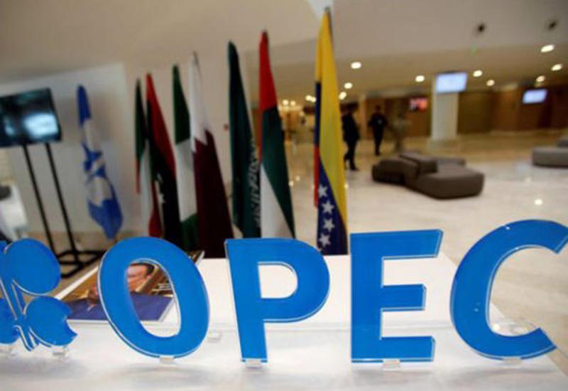 Азербайджан пригласили на ноябрьскую встречу ОПЕК в Вене