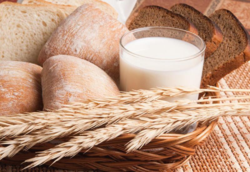В Финляндии появится хлеб из насекомых