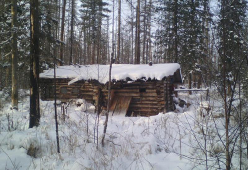 Медведь украл у российского охотника два ружья и унес в тайгу