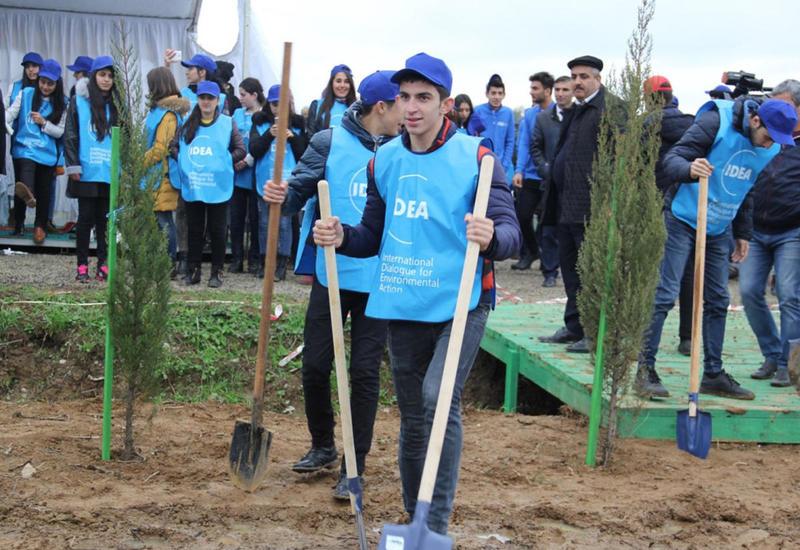 В Азербайджане продолжается закладка фруктовых садов для малоимущих семей