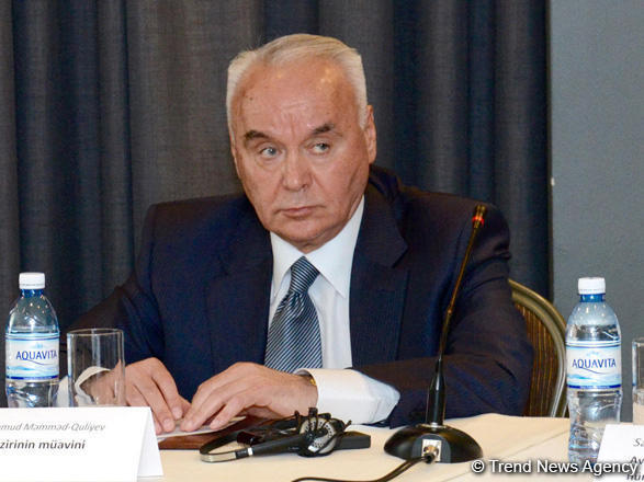 Замглавы МИД: Вступление Азербайджана вВТО вближайшие несколько лет сомнительно
