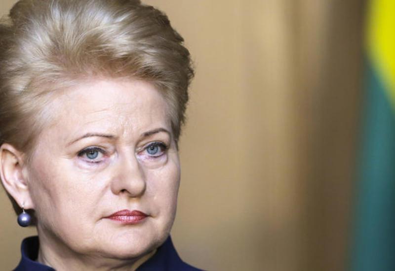Президент Литвы: с Россией важно сотрудничать и не воевать