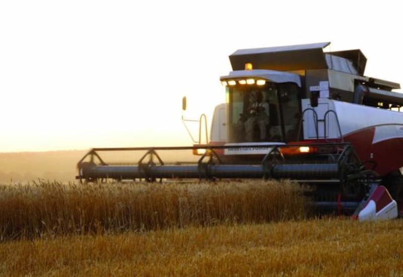 Азербайджан увеличит производство сельхозпродукции