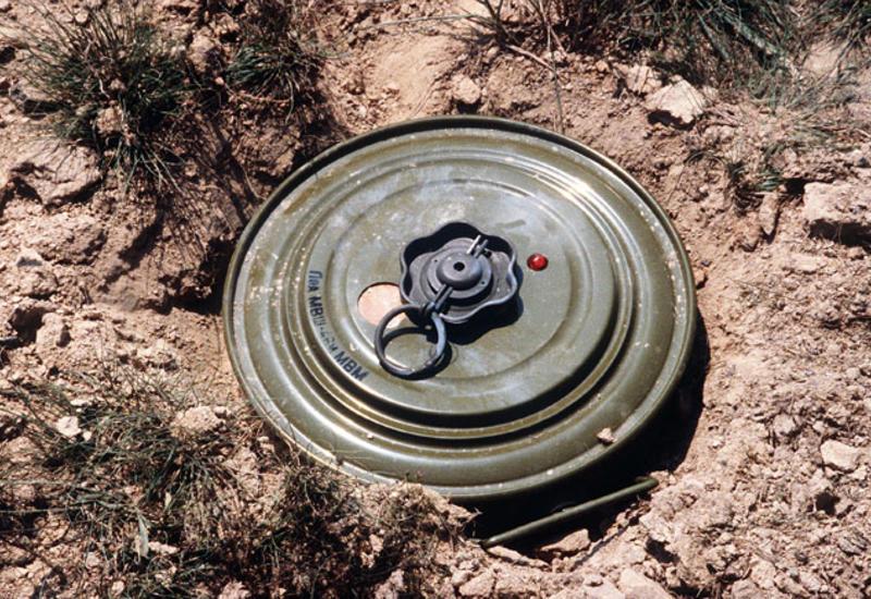В освобожденном селе Джоджуг Марджанлы нашли 166 мин
