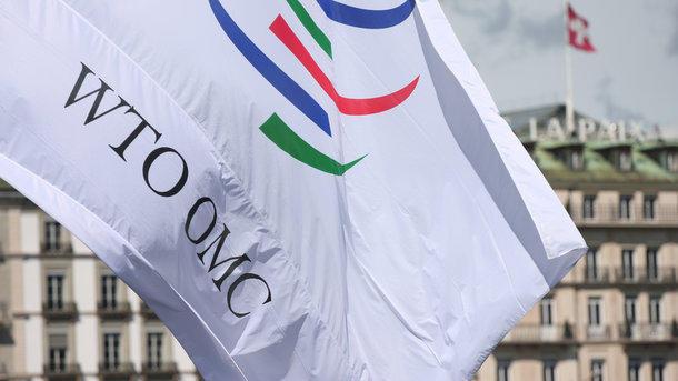 ВСовфеде пригрозили выходом РФ изВТО из-за иска европейского союза