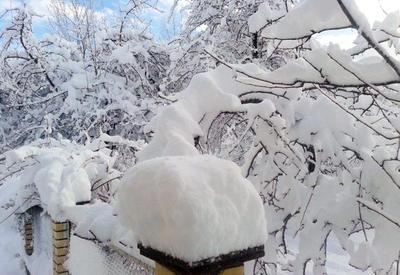 В Азербайджане выпало 13 см снега