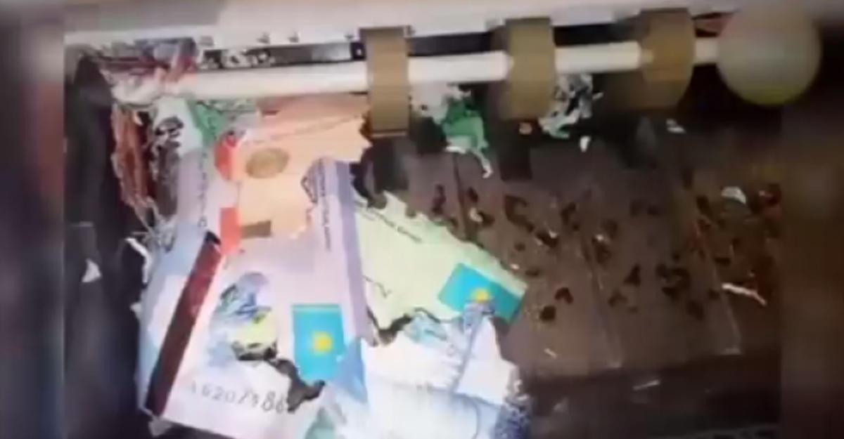 ВКазахстане мыши «съели» деньги вбанкомате
