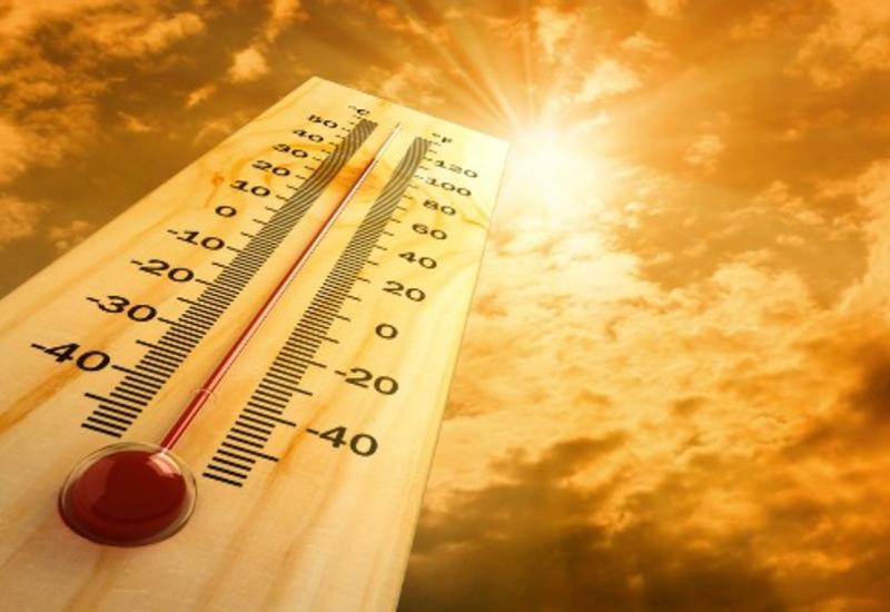 2017 год признан вторым самым жарким в истории