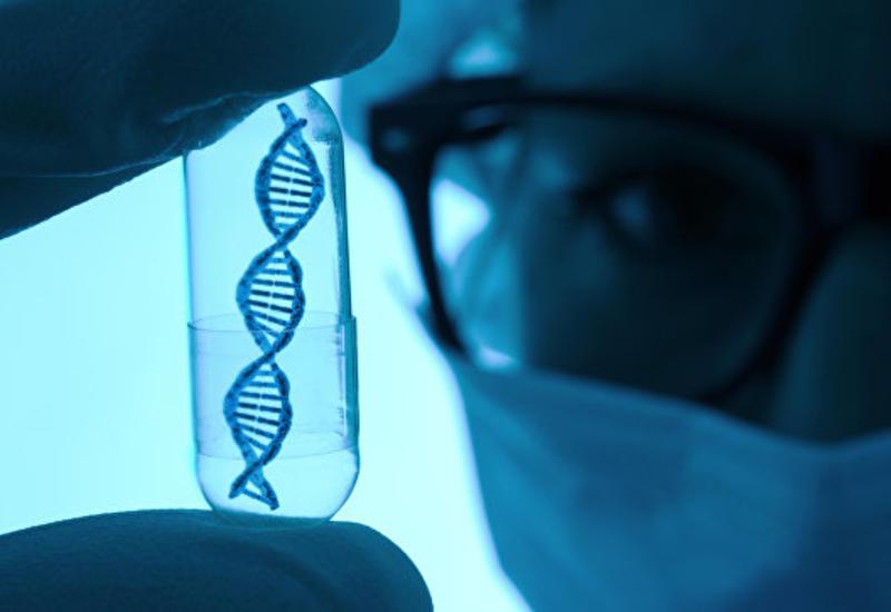 """Плохая экология заставляет клетки человека ускоренно стареть <span class=""""color_red"""">- ИССЛЕДОВАНИЕ</span>"""