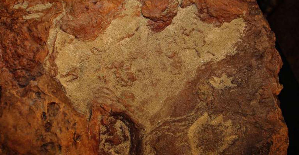 Ученые отыскали следы динозавров влаборатории NASA