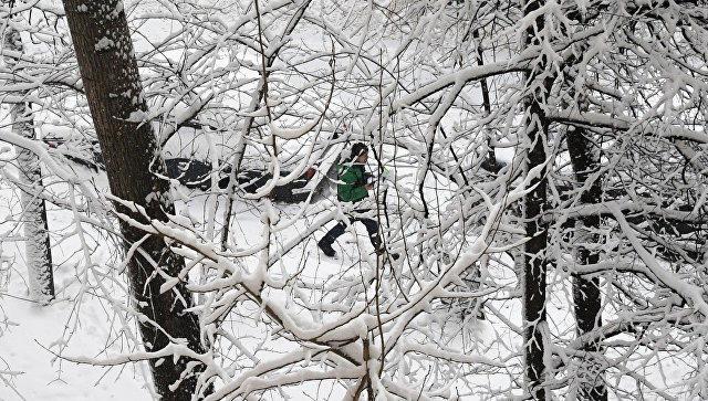 Вмосковских школах установят свободный график посещения из-за снегопада