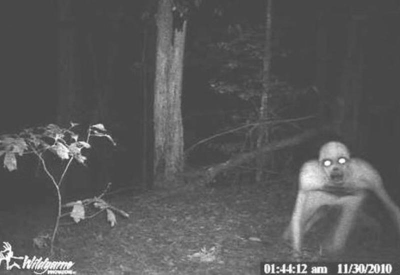 """14 самых жутких кадров с охотничьих камер ночного видения <span class=""""color_red"""">- ФОТО</span>"""