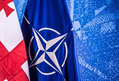 Премьер Турции подтвердил поддержку интеграции Грузии в НАТО