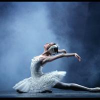 Звезды Большого театра подарят бакинкам показ балета «Лебединое озеро»
