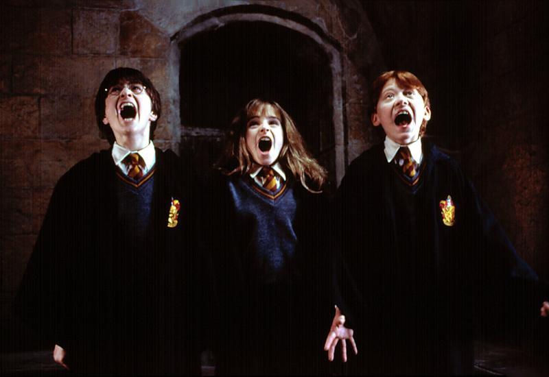 "Актер из ""Гарри Поттера"", ставший бойцом ММА <span class=""color_red"">- ФОТО</span>"