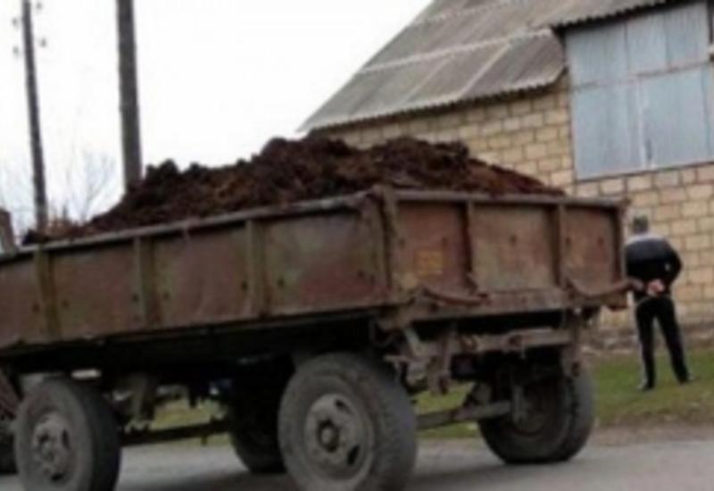 Трагичный случай в Сабирабаде: трактор задавил мальчика