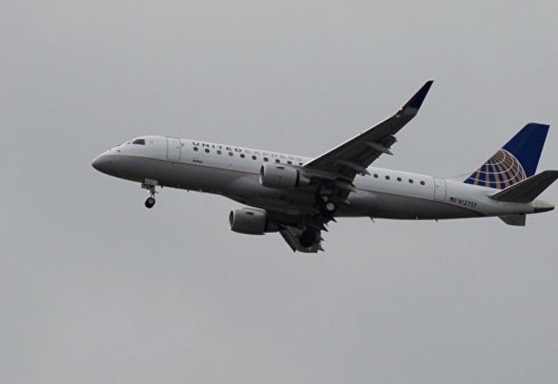 В США самолет пришлось посадить после обнаружения собаки на борту