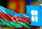 Глава минэнерго о сотрудничестве ОПЕК и Азербайджана