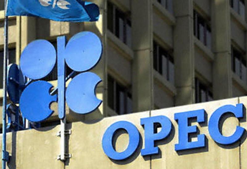 ОПЕК назвала прогнозы по добыче нефти в Азербайджане