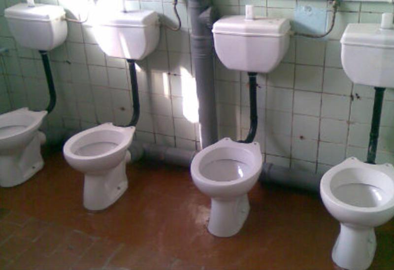 Новое направление в армянской науке - туалетология