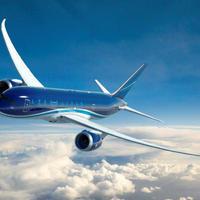 Самолет AZAL произвел вынужденную посадку в аэропорту Пулково