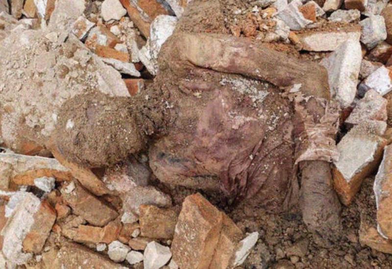 В Иране найдена мумия предпоследнего шаха