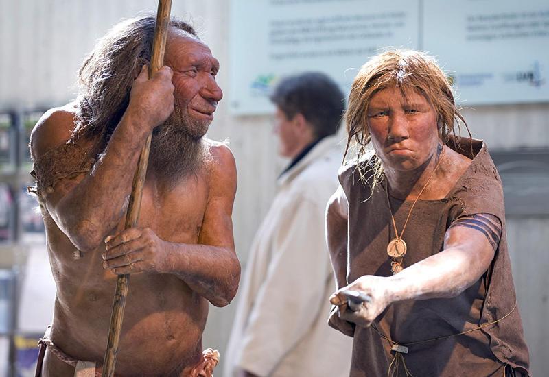 Ученые раскрыли уникальные особенности мозга неандертальцев
