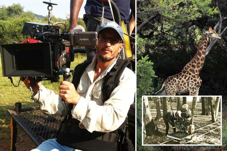 Картинки по запросу Жираф убил режиссера во время съемок фильма