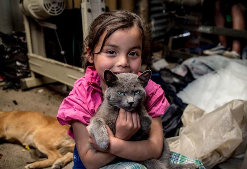 """Фотографы показали игрушки детей из бедных и богатых стран <span class=""""color_red"""">- ФОТО</span>"""