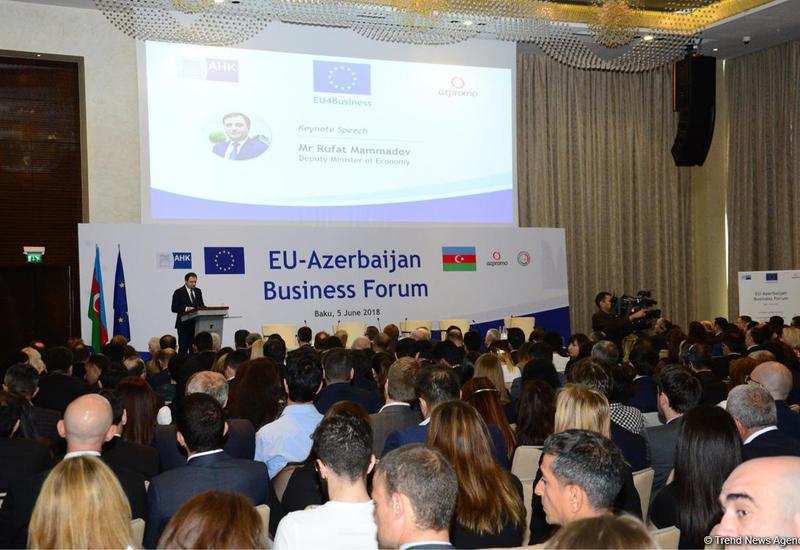 Руфат Мамедов: Реализуемые в Азербайджане реформы демонстрируют реальные результаты
